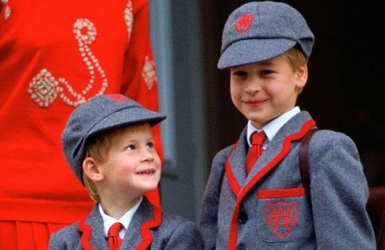 Школы Англии, в которых учились члены королевской семьи